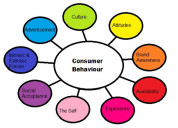 Do you need consumer behaviour assignment help