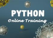 Learn python programming online