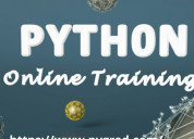 Python course for 8th to 12th grade students