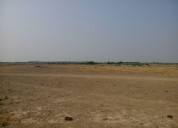 Land for sale in bhadiyad, dholera smart city, ind