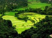 Travel coorg hill town with your family / friends