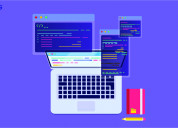 Custom software development company in noida
