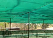 High quality green net offered by sumangalam tradi