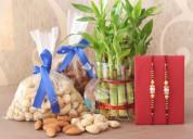 Send rakhi gifts to delhi with oyegifts