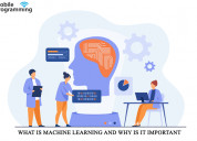 What is machine learning and why is it important |