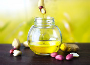 Want to install a groundnut oil processing plant?