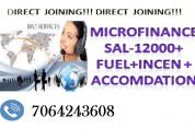 Direct job in micro finance