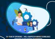 End-to-end custom web application development ser
