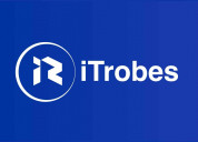Professional software consulting - itrobes