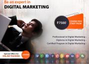 Proffesional in digital marketing
