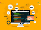 Responsive website development company in delhi nc