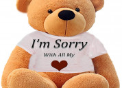 Sorry soft toys online from myflowertree