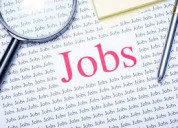 Urgent required for back office work